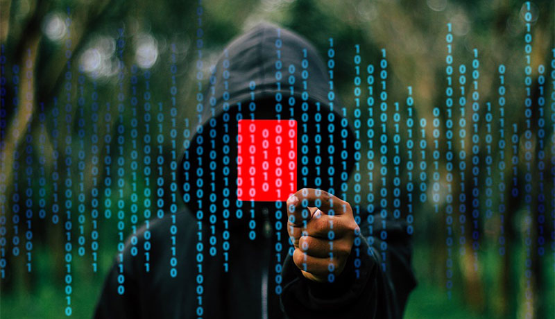 hacke2 - 12 Easy Steps to Protect Your Website from Hackers